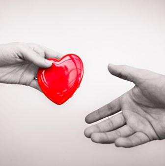263052281-heart