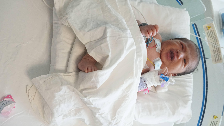 DSC04001 neonatal